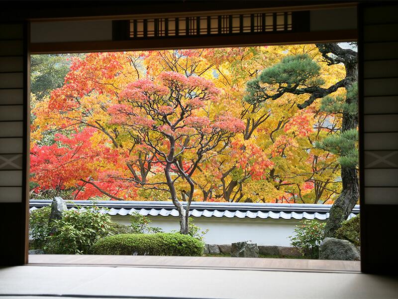 Kaijusen-ji Temple