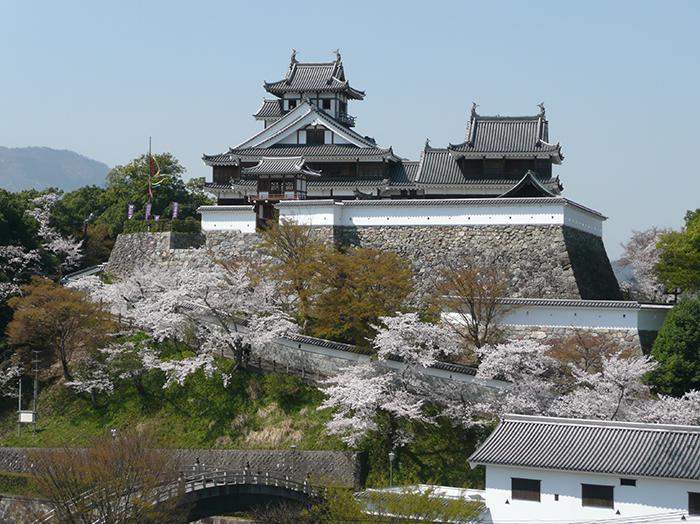 Fukuchiyama Castle