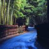 Take-no-Michi (Bamboo Road)
