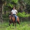 Horseback riding in Woodland Kyoto