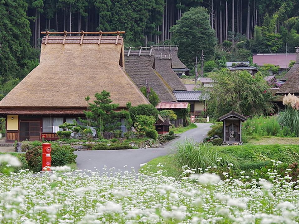Miyama Kayabuki no Sato Thatched Houses