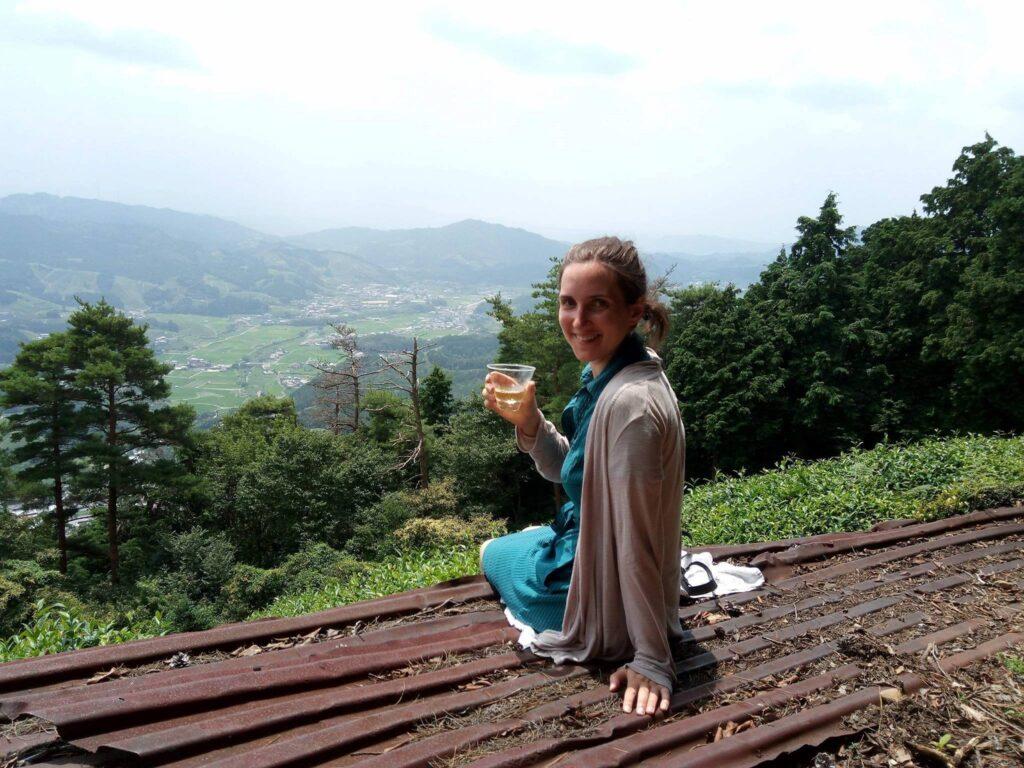 茶园健走、采茶体验