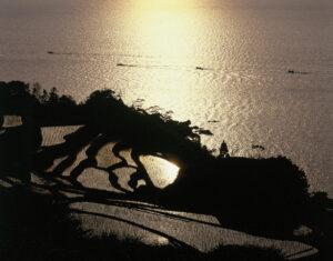 Nii Rice Terraces