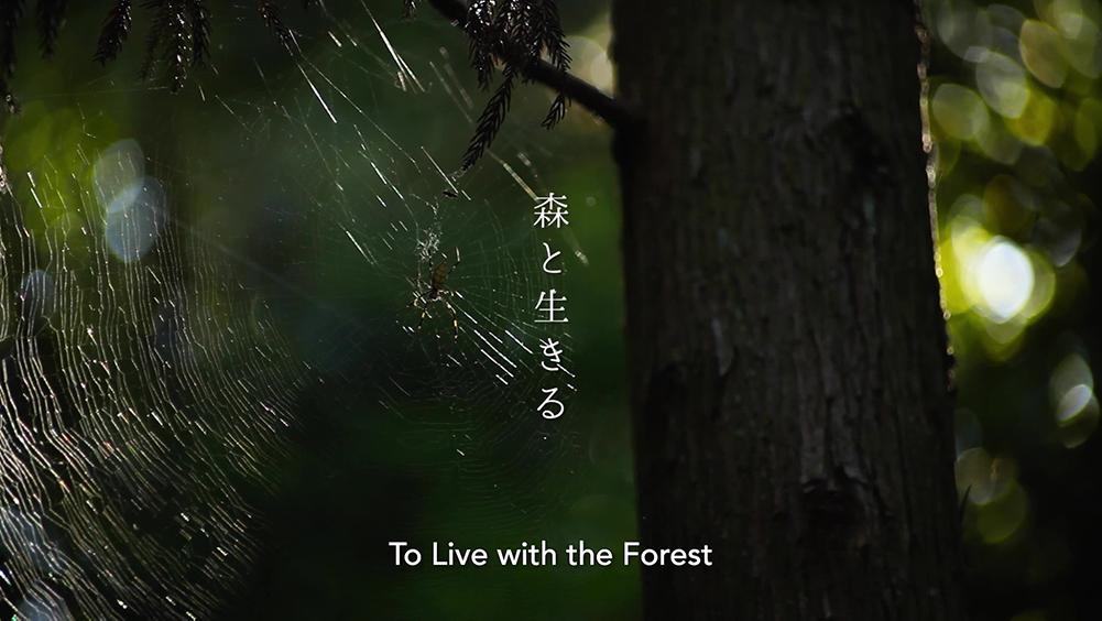 To Live with the Forest